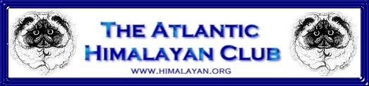 banner himalayan