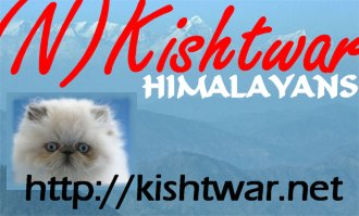 kishtwarbanner02